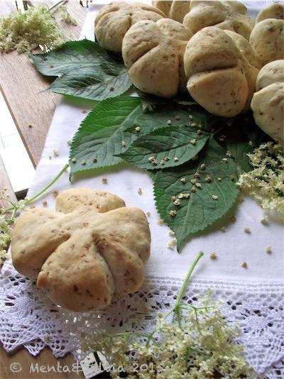 pana-fiori-sambuco